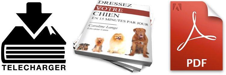 Caroline lange : avis sur le livre pdf
