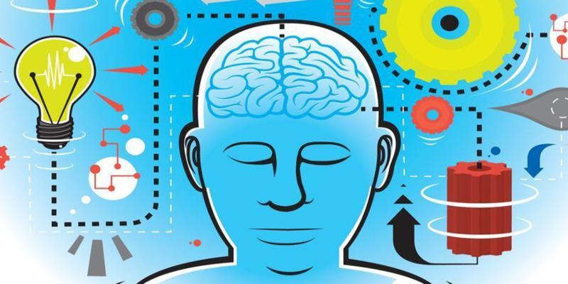 Savoir se concentrer et lire rapidement pour maximiser son efficacité avec le livre de Steve Abd Al'Karim