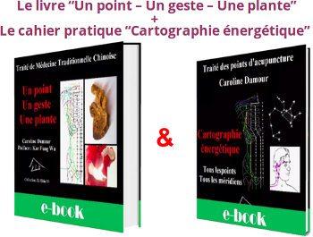 La médecine traditionnelle chinoise PDF (chemins-de-sante.fr), Caroline Damour