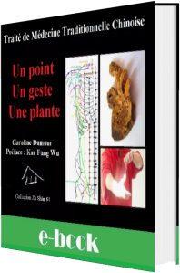 Traité de medecine traditionnelle chinoise un point, un geste, une plante Caroline Damour